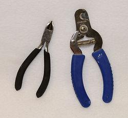 clippers (800x742).jpg