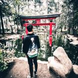 """Visitando """"Japón"""""""