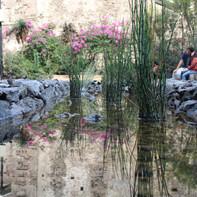Jardín Secreto