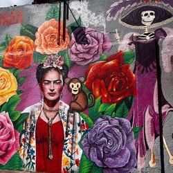 Murales Urbanos_#fridakahlo #mexico #instagood #photooftheday #beautiful #picoftheday #instadaily #a