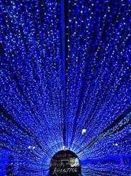 Tunel navideño