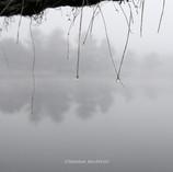 Amanecer en el lago