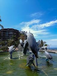 Delfines Mazatlán