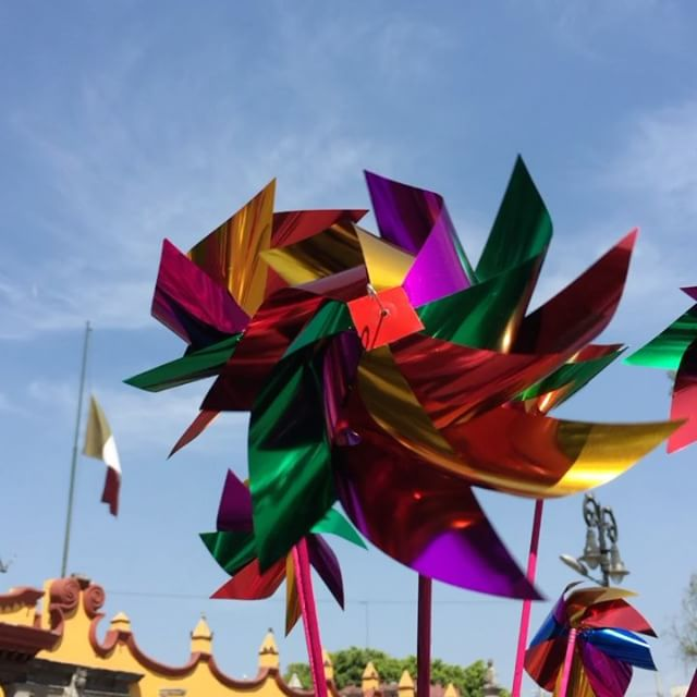 Colores en movimiento de Coyoacán _#colors #colorful #color #trip #photooftheday #instapassport #tra