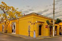 Oaxaca de amarillo