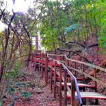 Escaleras Chipinque