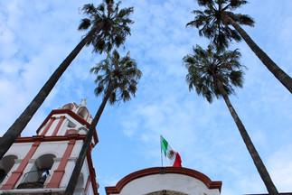 Bandera entre palmeras