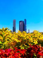 Primavera mexicana
