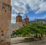 Oaxaca sin ambulante