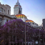 Palacio y Torre