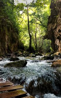 Río Escanela
