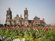 Romanticismo en la Ciudad de México