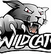 Wildcats.png
