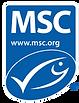 msc_logo_0.webp