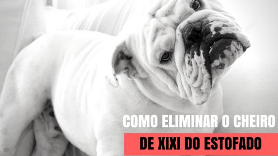 ELIMINAR CHEIRO DE XIXI NO ESTOFADO