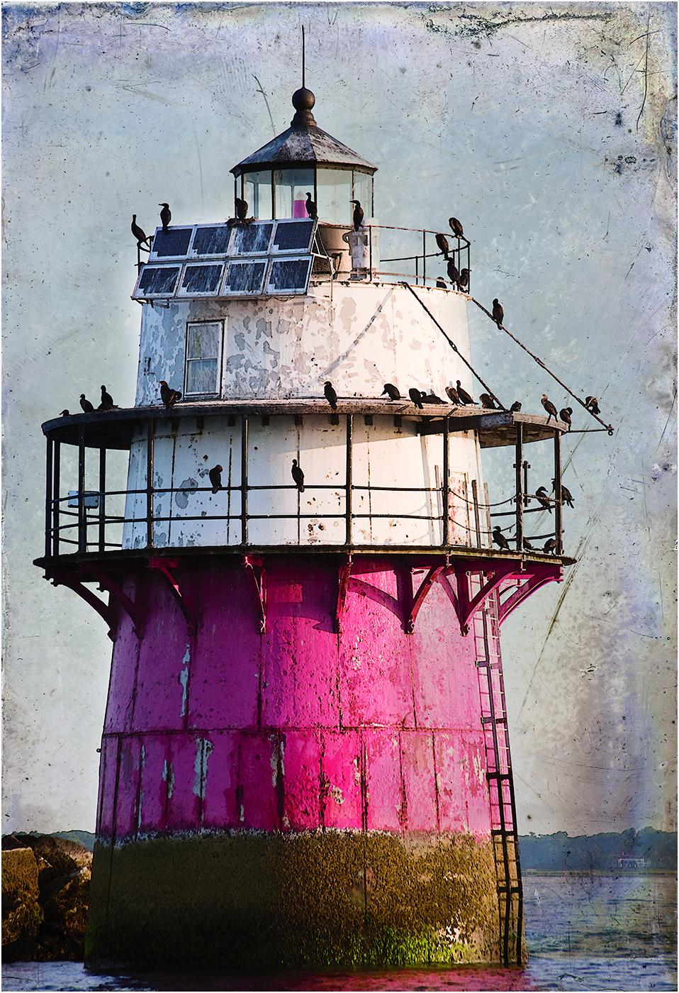 Bug Lighthouse