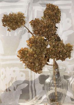 Dried Hydrangea in Vase 1