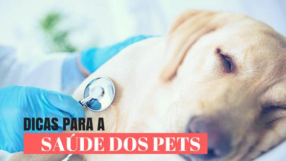dicas para a saúde dos pets