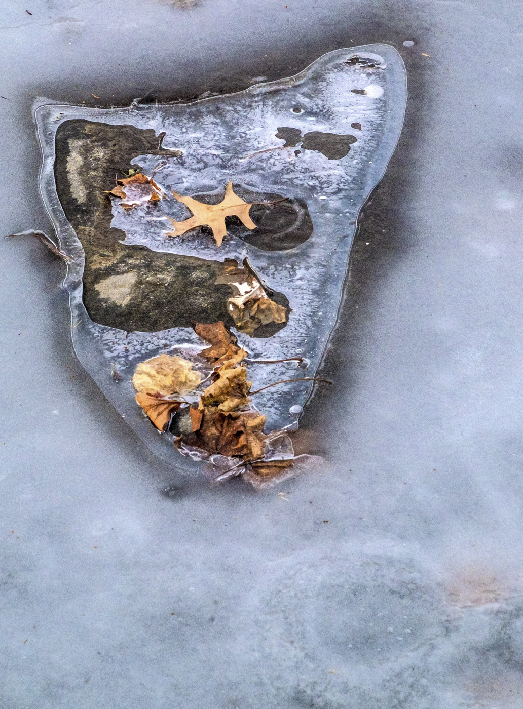 Abstraction in Ice