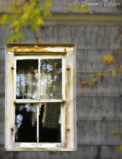 11 Window Dressing