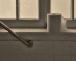 Antique Toilet Paper