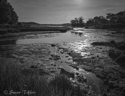 Susan Tiffen Sunset_ BW