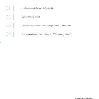 Informe_de_ODS_2018_Página_02.jpg