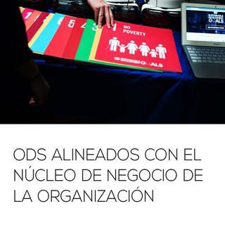 Informe_de_ODS_2018_Página_09.jpg