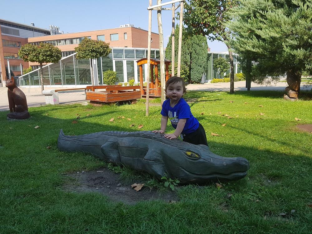 תנין בגינה בבודפשט play with lilach