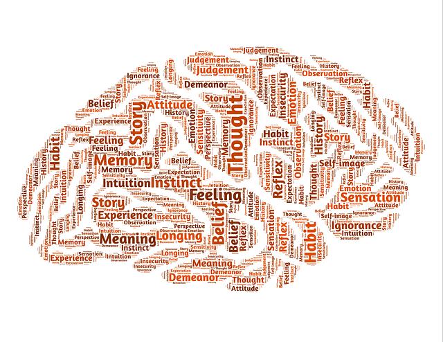 הרצאה על המוח play with lilach