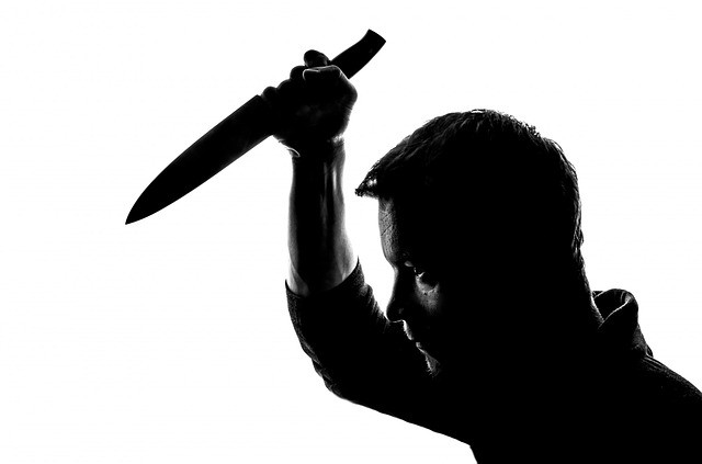 הרצאה רוצחים סדרתיים play with lilach האלווין 2019