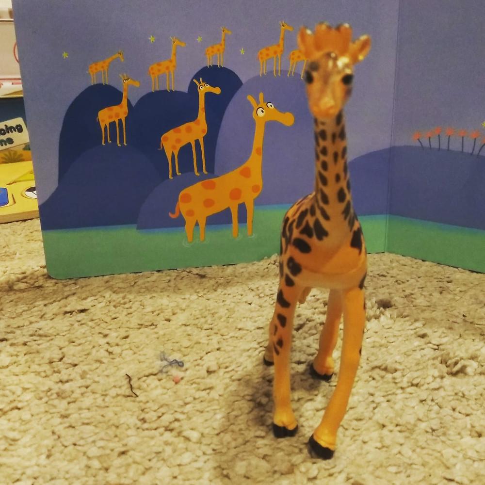 ג'ירפה - משחקי חיות לפעוטות play with lilach