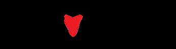 Carventuri-logo.png