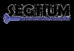 Logo-Segtium_edited_edited.png