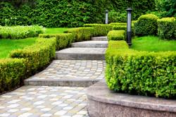 Landscape Architecture - Walkway