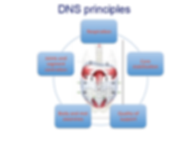 Physis Physical Therapy DNS