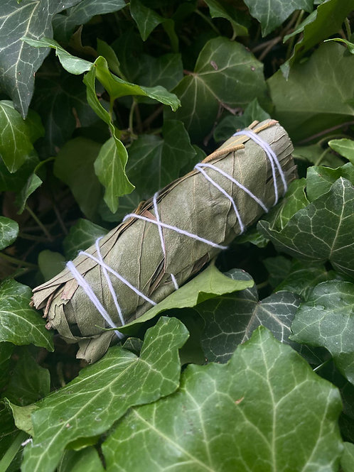 Anointed Eucalyptus Smudge Stick