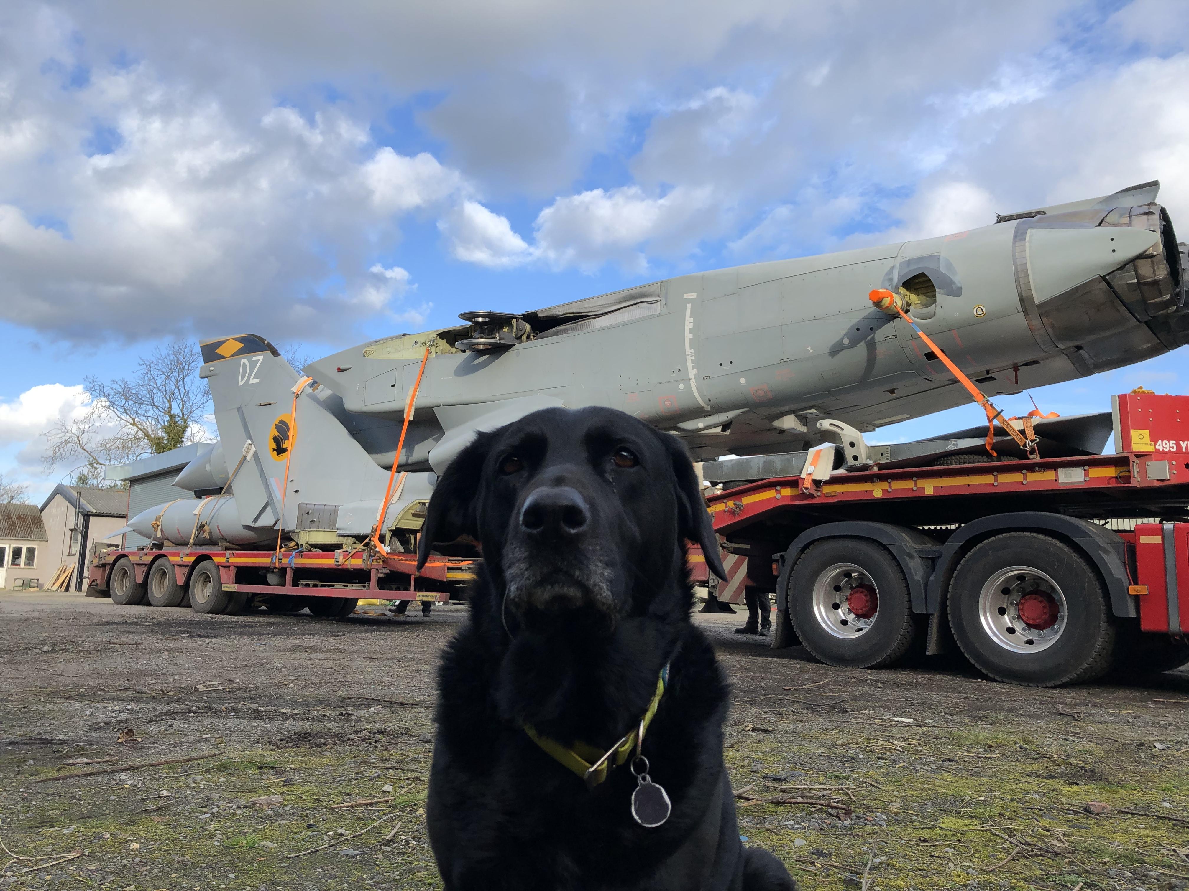 Tornado F3 shipping
