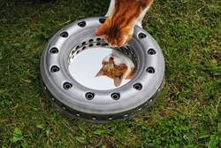 Tornado Combustion Liner Mirror
