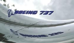 Boeing 737 engine cowling mirror (4)_edi