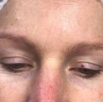 MicroBlading Alison Petitjean Darlington, Semi Permanent Eyebrows, Sombre Brows (11).jpg