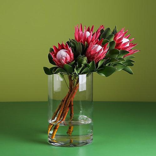 5 Королевских Протей в вазе