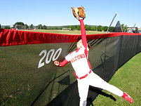 SPECTO Softball Outfiled Fence