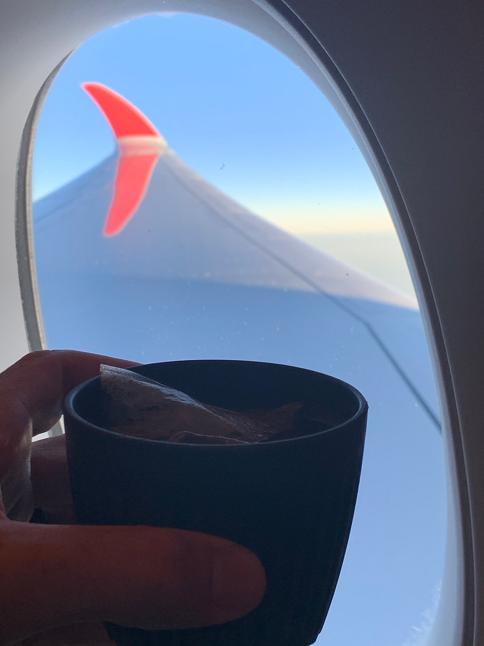 How many times have you wished you could get great coffee in an airplane? Wishfull thinking works, dipnbrew is the perfect catering solution for airlines companies in search for a better coffee option.
