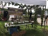 2018_08_25 Farmer's Market2.jpg