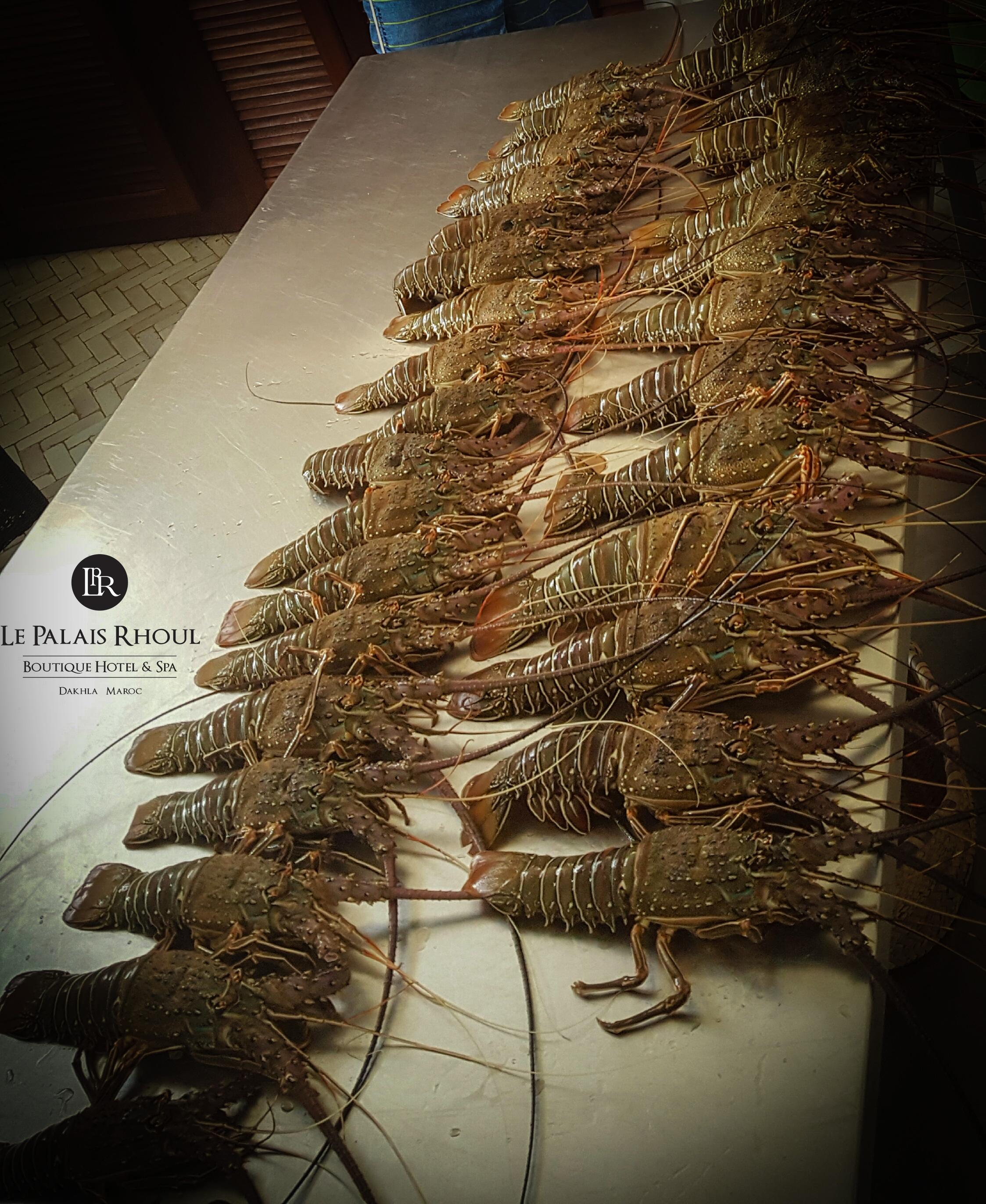 Le Palais Rhoul Dakhla | hotel spa | Langoustes