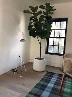Cambridge, MA Private Residence