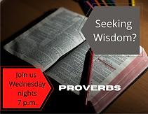 Seeking Wisdom_.png
