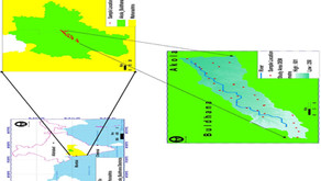 Groundwater evaluation for drinking purposes using statistical index: study of Akola and Buldhana