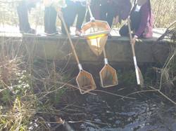 Pond dipping in Spring.jpg